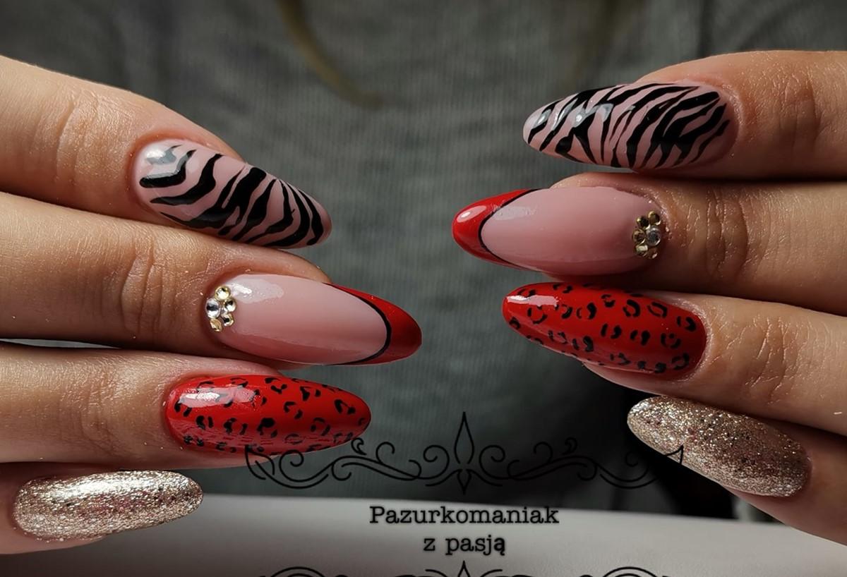 paznokcie zebra